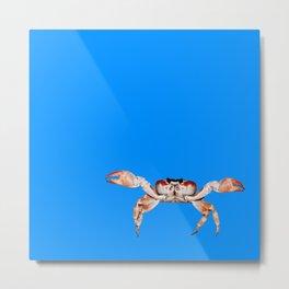 Lonely Crab - Blue Metal Print