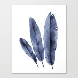 Blue plant Canvas Print