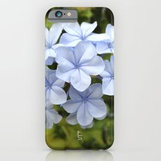 Blue Flowers iPhone 6s Slim Case