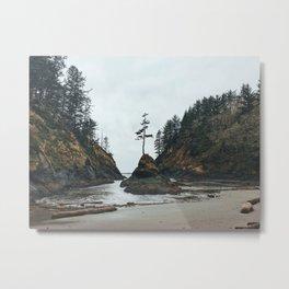 Dead Man's Cove Metal Print