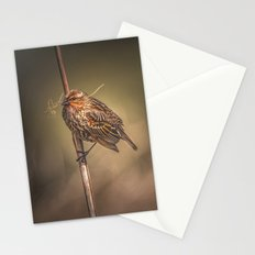 Red-winged Blackbird Stationery Cards