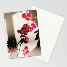 35mm Orchid 2 Stationery Cards