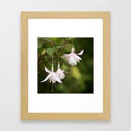 Beautifully Glamorous Fuchsia Flower #decor #society6 #buyart Framed Art Print