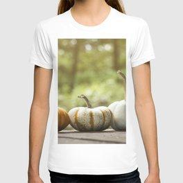 Fall pumpkins, harvest decor T-shirt