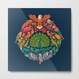 Aerial Rainbow Metal Print