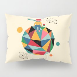 Lonely planet Pillow Sham