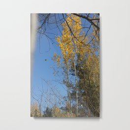 Autumn is a wonderful time! Metal Print