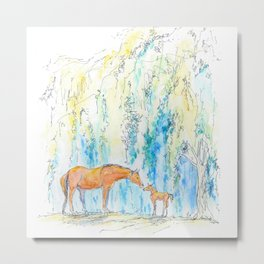 Flicka and Willow Metal Print