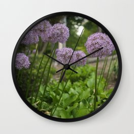 Purple Allium Ornamental Onion Flowers Blooming in a Spring Garden 3 Wall Clock