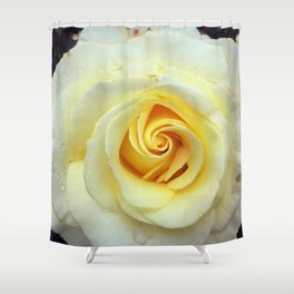 The Yellow Rose Shower Curtain