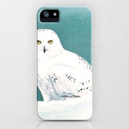 Arctic Eyes iPhone Case