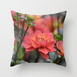 Salmon Colored Dahlias Throw Pillow
