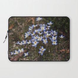 Wild Flowers Bluets Laptop Sleeve