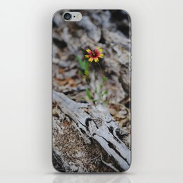 A lone Firewheel iPhone Skin