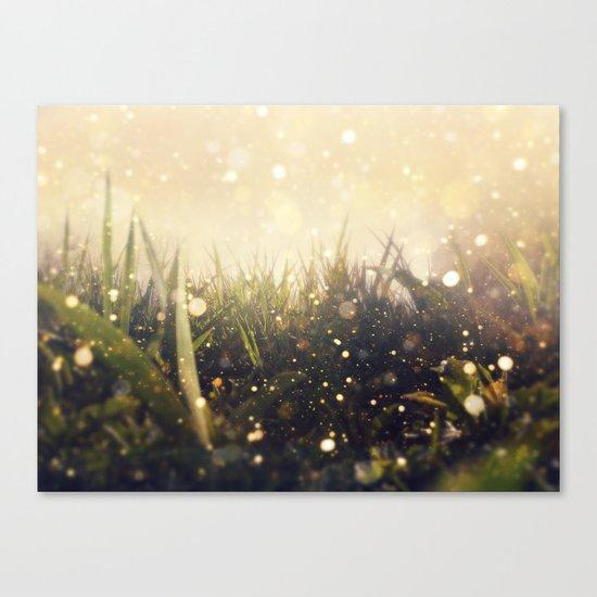 Hidden in the Magic Garden Canvas Print