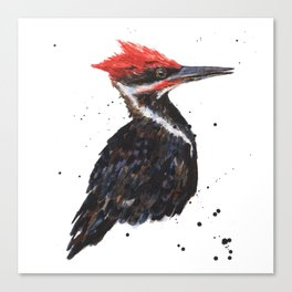 Woodpecker painting, bird paintings, bird lover gift, pileated woodpecker Canvas Print