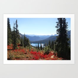 Autumn in the PNW Art Print