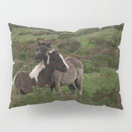 Wild Dartmoor Foals Pillow Sham
