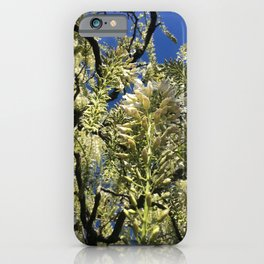 Looking Up At Blue Sky Through Blooming Branches iPhone Case