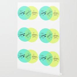 Keytar Platypus Venn Diagram Wallpaper