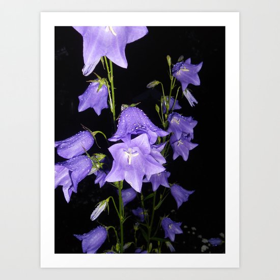 Flowers in Purple Art Print