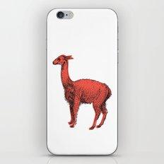 vicuña iPhone & iPod Skin