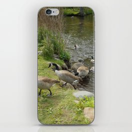 """""""The Pond"""" iPhone Skin"""