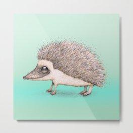 Hedgehog pencil drawing Metal Print