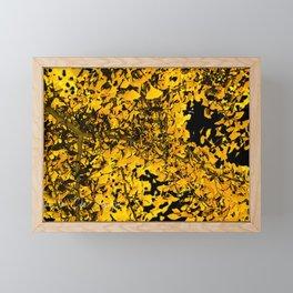 Ginko Leaves In California Framed Mini Art Print