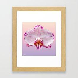 Orchid Portrait Framed Art Print