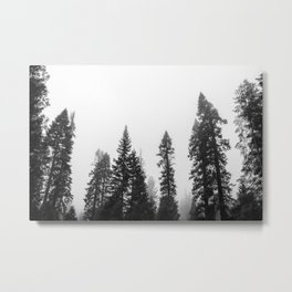 Deep in the Forest of Yosemite Metal Print