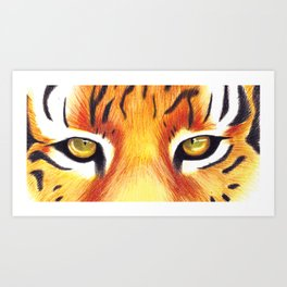 Tiger Eyes Illustration Art Print