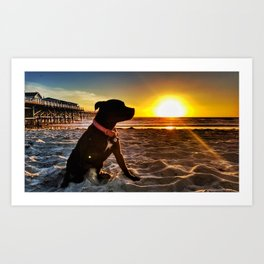 Pacific Beach Sunset with Porcha Art Print