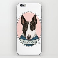 bull terrier iPhone & iPod Skins featuring Bull Terrier by Rhian Davie