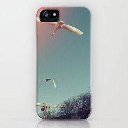 Swans over Berlin iPhone Case