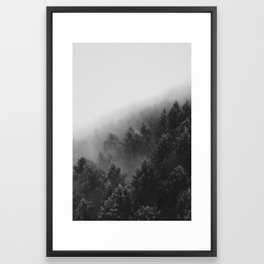 Misty Forest II Framed Art Print