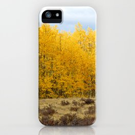 Kenosha Pass Study 7 iPhone Case