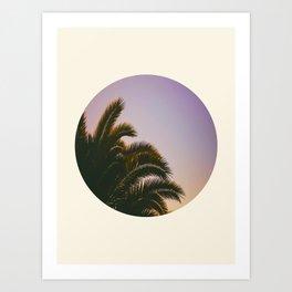 Sunset Purple Palm Tree Circle Photo Art Print