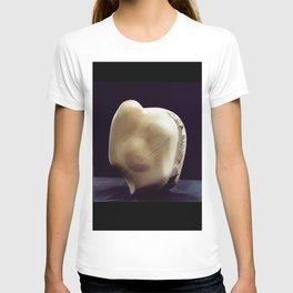 Fertility by Shimon Drory T-shirt