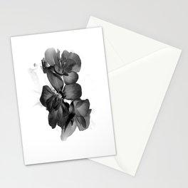 Black Geranium in White Stationery Cards