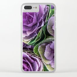 Ornamental cabbage flower. Sirenity Clear iPhone Case