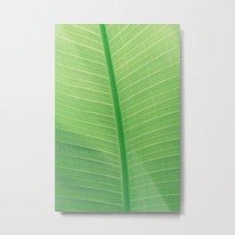 Tropical Green Leaf Metal Print
