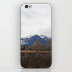 Turnagain Pass iPhone & iPod Skin