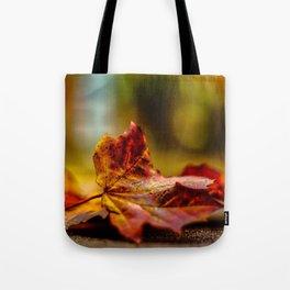 autumn_1 Tote Bag
