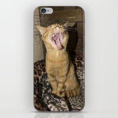 Kitty Yawn iPhone & iPod Skin