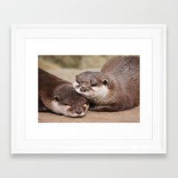 otters Framed Art Prints featuring Otters 1 by Stephie Butler Photography