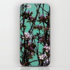 Azur iPhone & iPod Skin