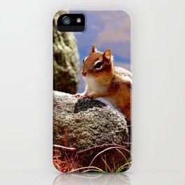 Portrait of a Chipmunk iPhone Case