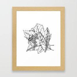 Leaves and Sticks Framed Art Print