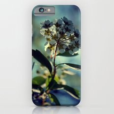 A change of pace iPhone 6s Slim Case